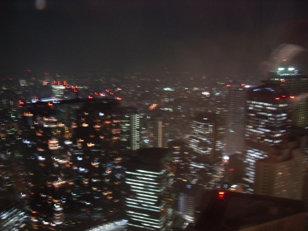 Travel Diary: Zwei Wochen in Japan | Teil 4 - sdc15664
