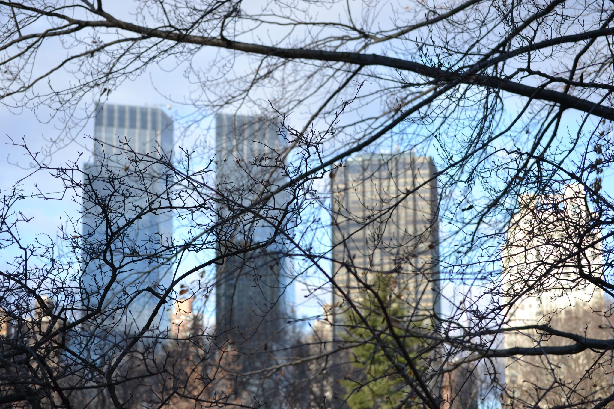 New York Part 1: Central Park & Metropolitan Museum of Art - DSC 00601