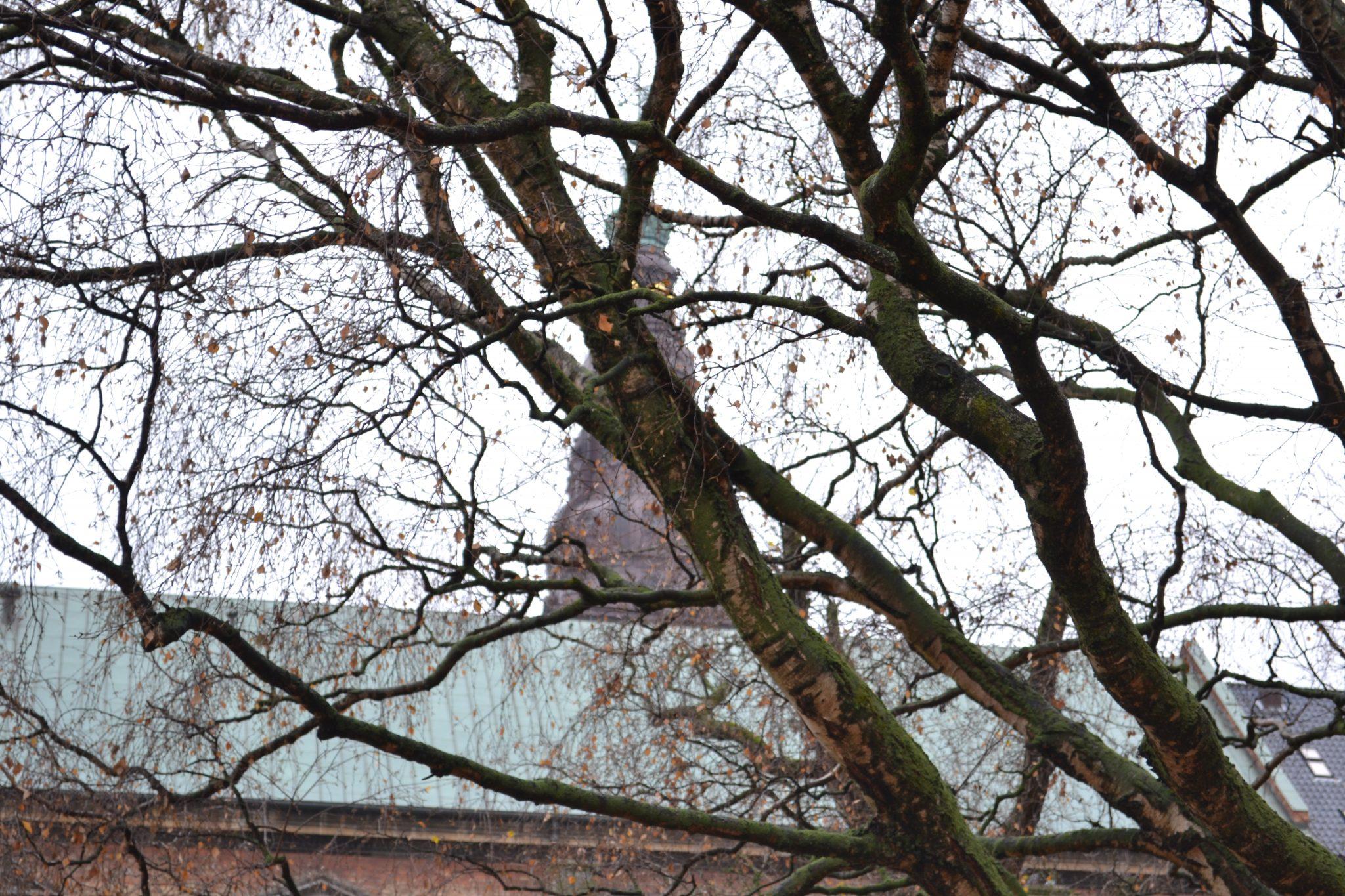 Travel Tip: Sightseeing in Copenhagen - DSC 0021