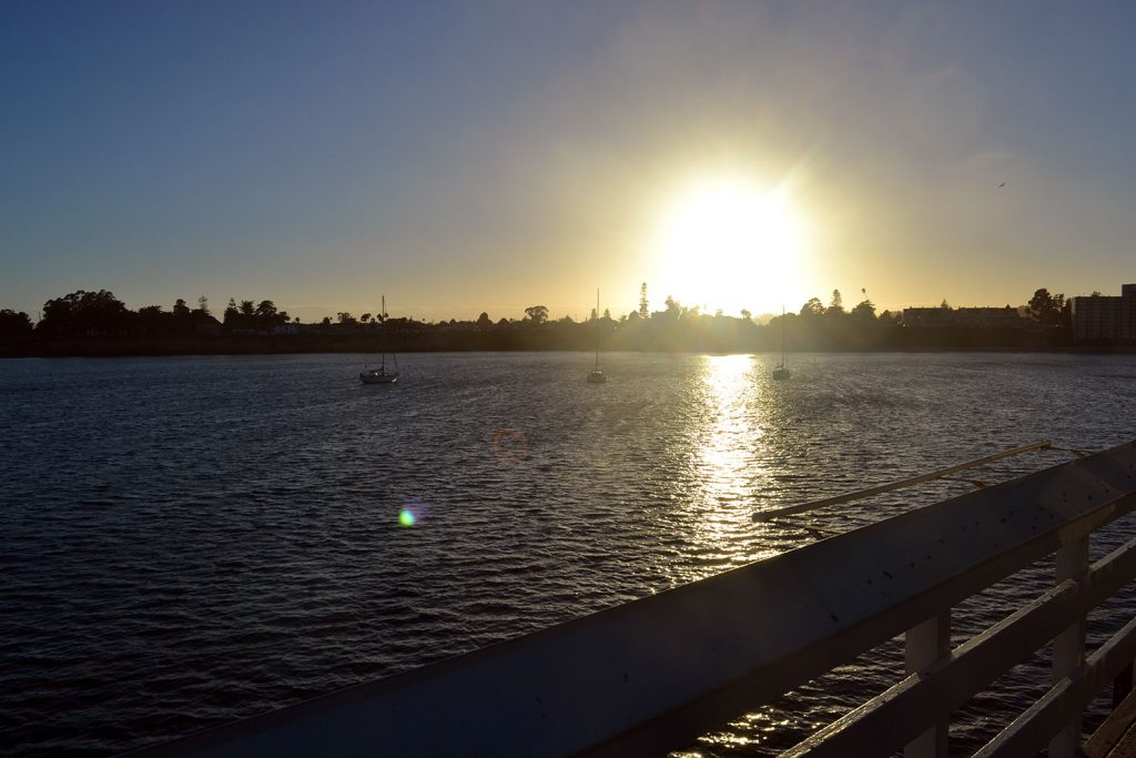 Travel Diary: Santa Cruz | USA Roadtrip - Santa Cruz 15 1024x683