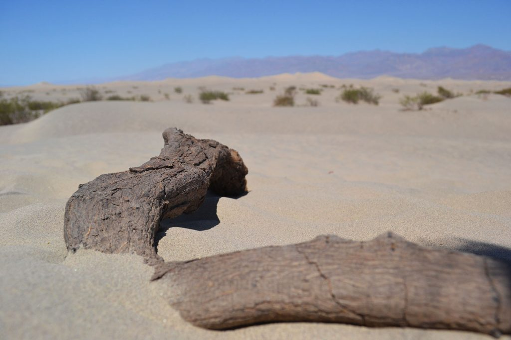 Travel Diary: Death Valley | USA Roadtrip - Death Valley 9 1024x683