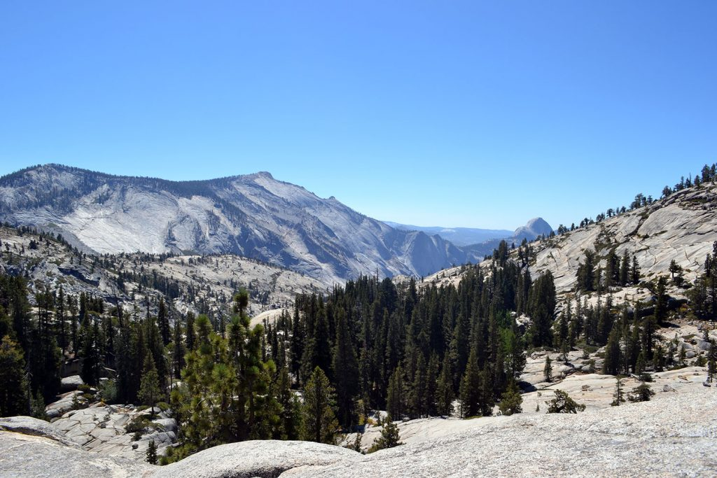 Travel Diary: Yosemite National Park | USA Roadtrip - Yosemite 3 1024x683