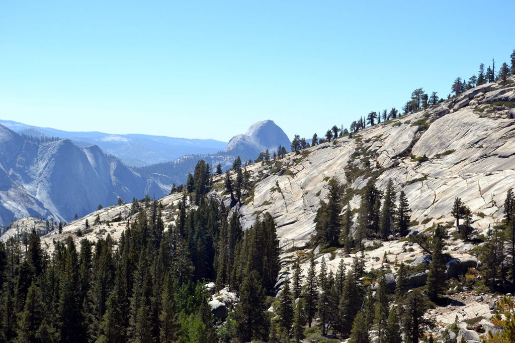 Travel Diary: Yosemite National Park | USA Roadtrip - Yosemite 4 1024x683