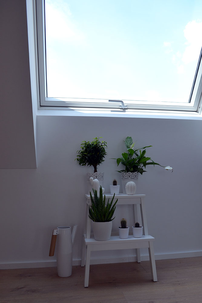 My Little Green Corner | Interior Inspiration - Little Green Corner 4
