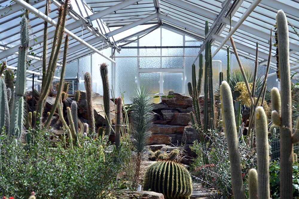 Travel Tip: Schloss Nymphenburg & Botanische Tuin | München - Botanischer Garten 3