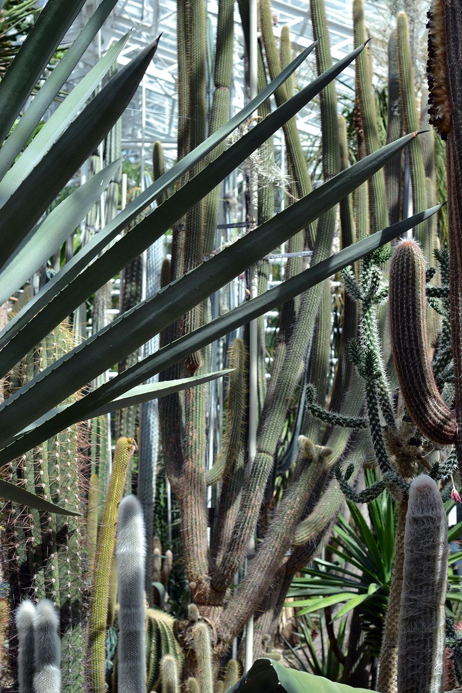 travel tip schloss nymphenburg botanische garten. Black Bedroom Furniture Sets. Home Design Ideas